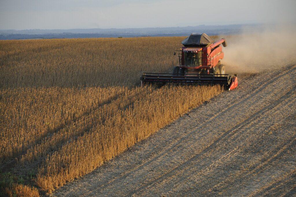 Land Grabbing Piantagione